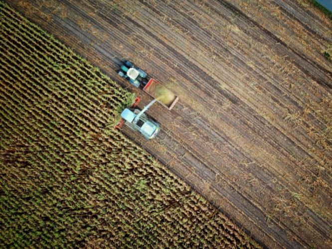 Les coûts externes de la production agricole