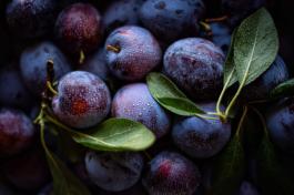 Les prunes - Un fruit délicieux que nous amène l'automne