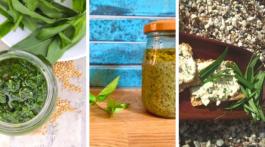 Nouvelles recettes à base de plantes sauvages comestibles. Ces herbes printanières égayeront votre cuisine et vos repas.